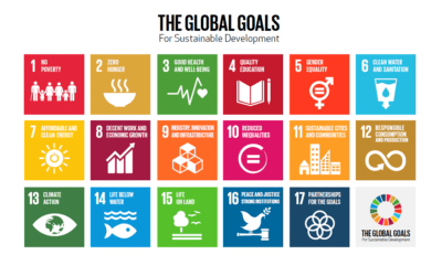How to Use the Sustainable Development Goals for Business