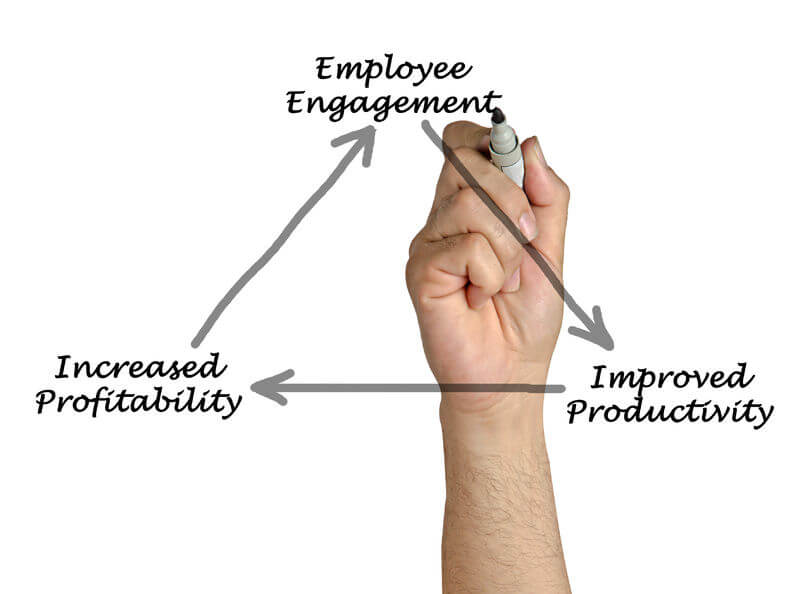 Review Attitude to Sustainability with an Employee Engagement Survey
