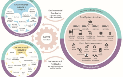 Tackling Food Waste in the Food Sector