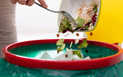 Reducing Domestic Food Waste and Other Food Impacts