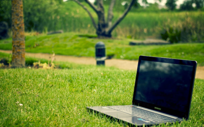 Home Working and Environment – Top Tips