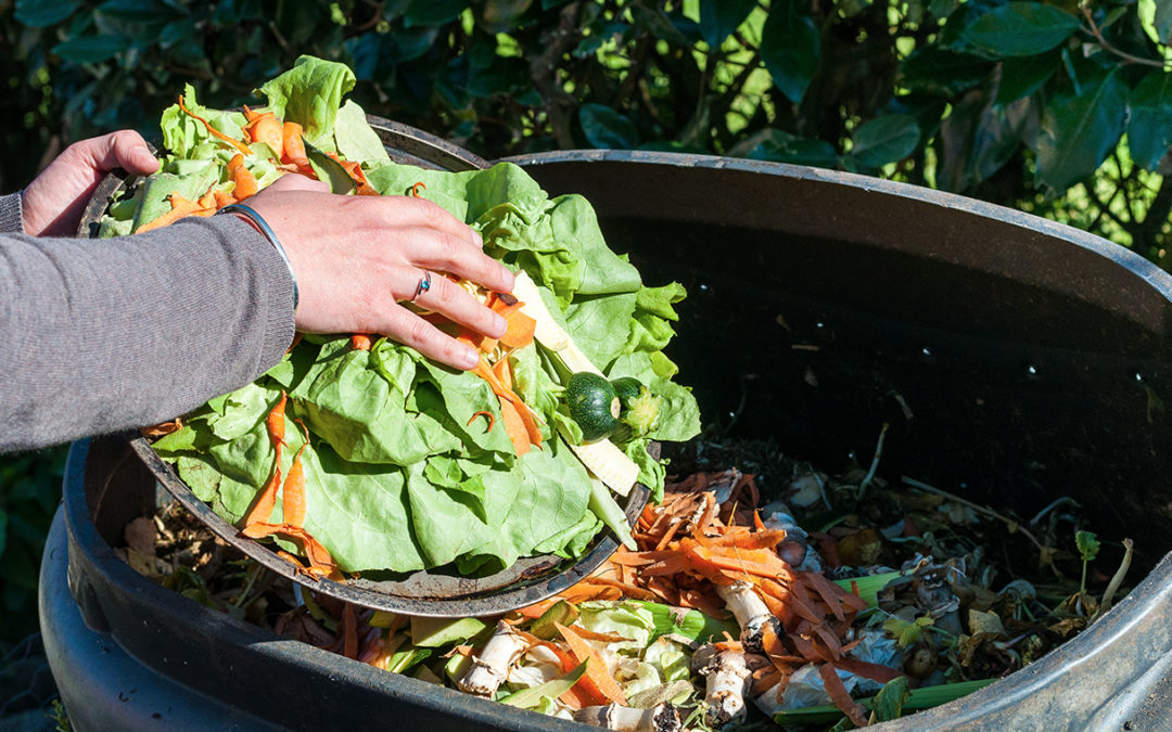 World Food Day 2020. Tips on avoiding #foodwaste