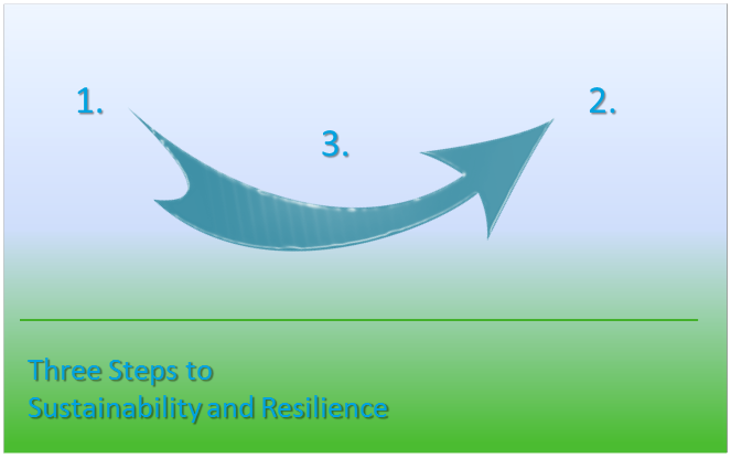 Three Steps to Building Resilience and Sustainability Post COVID-19